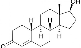 STEROIDS FAMILY TREE (Type of Steroids)